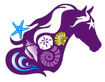 C Ponies | Bradenton and Tampa Bay Area | Beach and Trail Horseback Riding