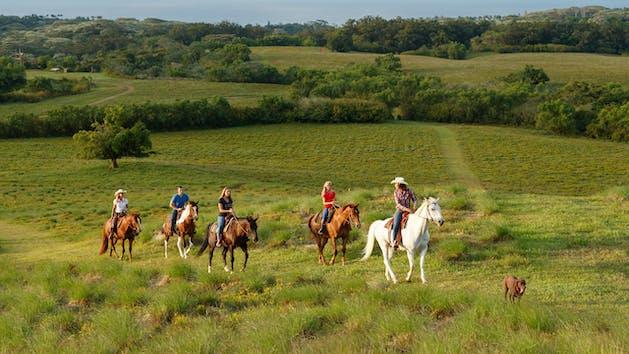 Group Paniolo Horseback Ride