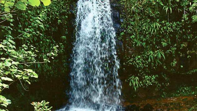 Kayaking Hiking Two Ziplines And A Swim Picnic At Waterfall