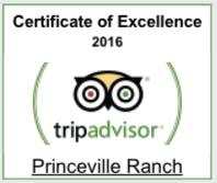 tripadvisor 2016