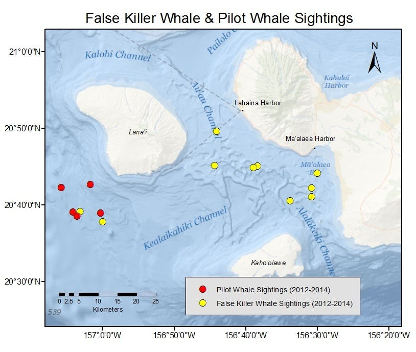 Sightings Map Of False Killer Whales and Short-Finned Pilot Whales