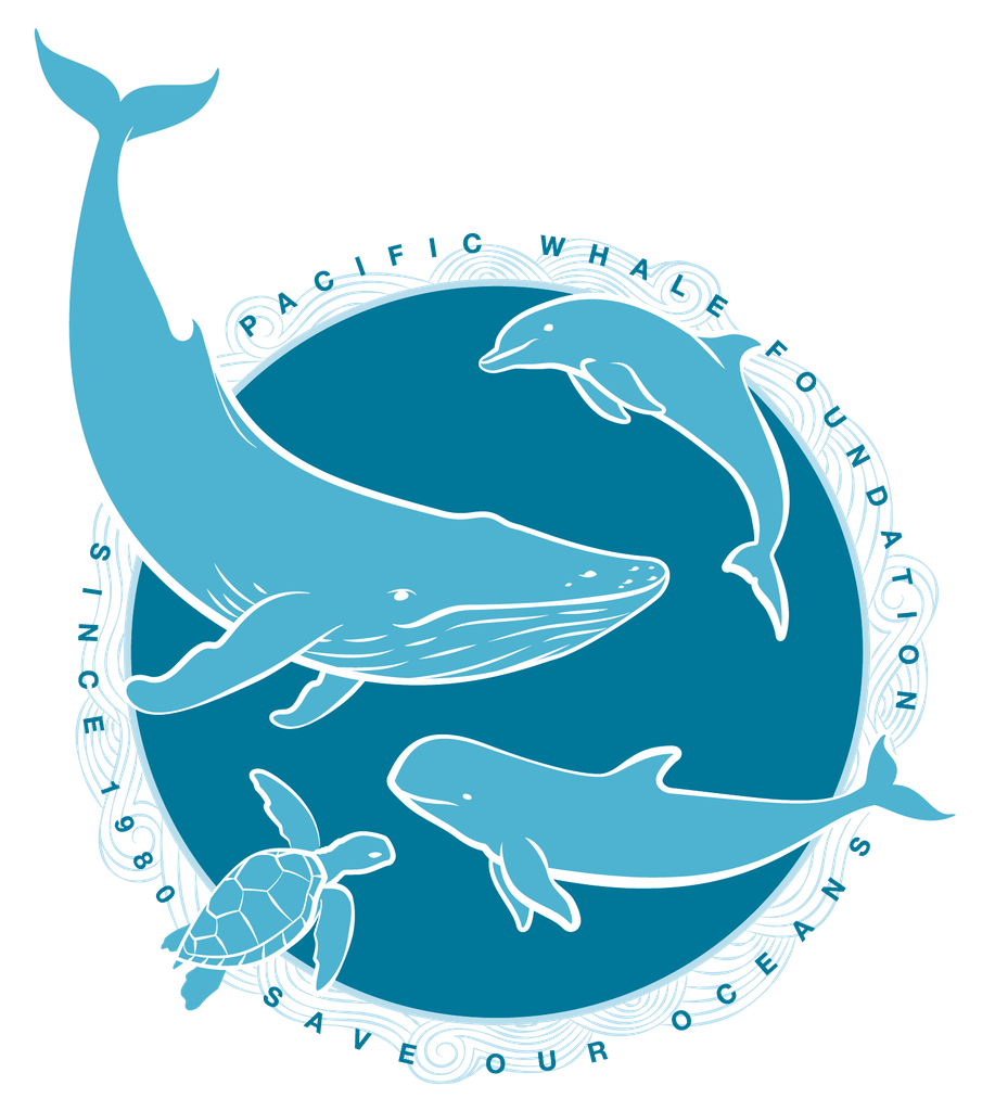 When you adopt a whale, dolphin, or false killer whale, you'll learn about your special animal – while supporting research, education and programs that work ...