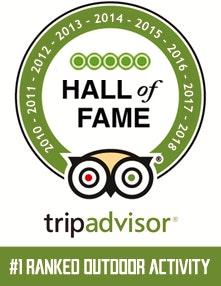 Desert Wolf TripAdvisor Hall of Fame