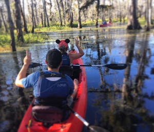 kayak tour in cypress swamp
