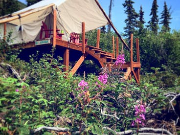 glamping tent fireweed