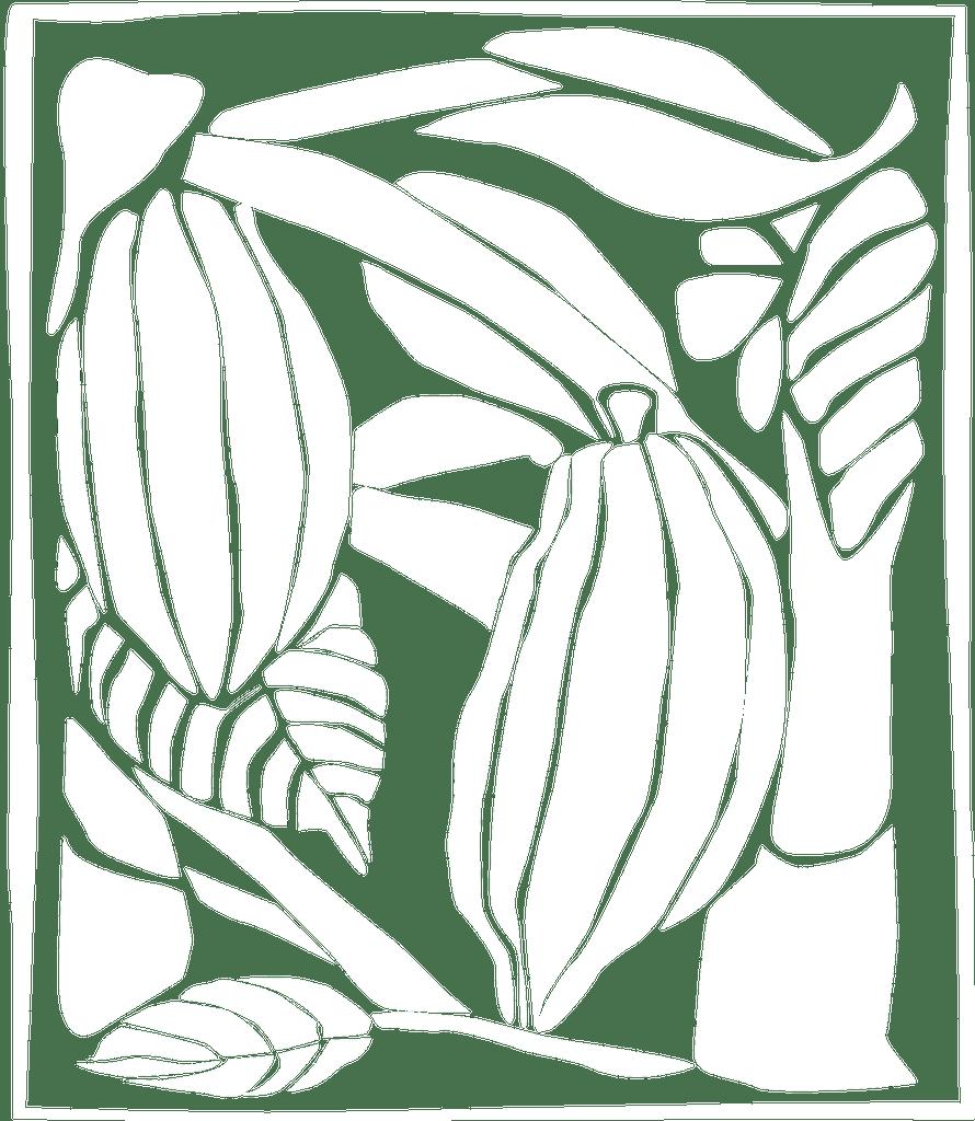 Princeville Botanical Gardens Kauai Botanical Gardens