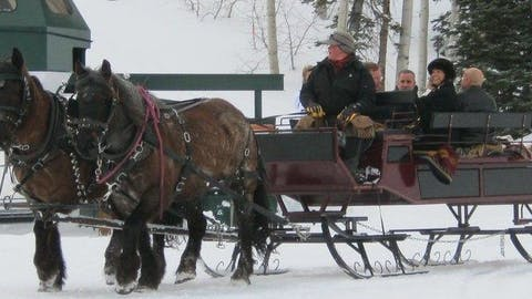 Private Sleigh Ride Image 1