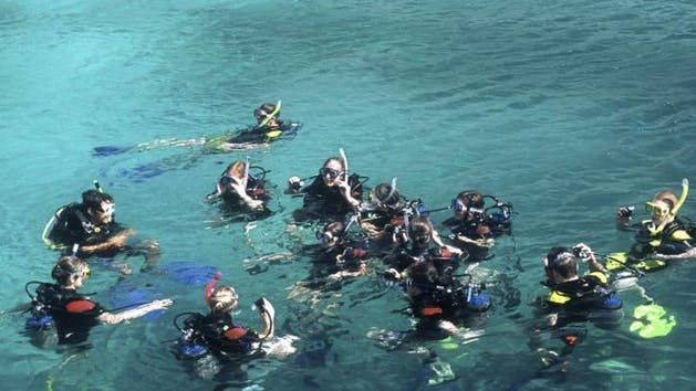 Group of Divers learning how to scuba