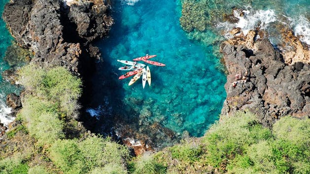Ocean Safari Kayak Tour