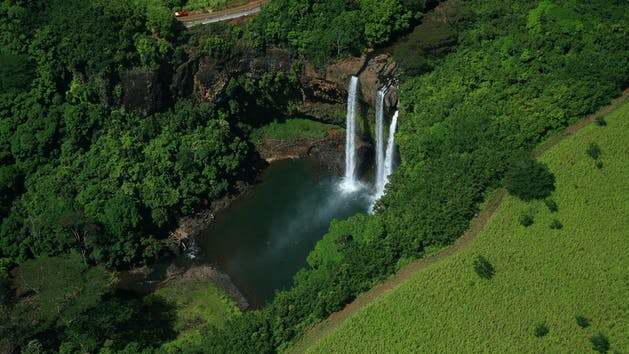 a waterfall surrounded by green grass and trees