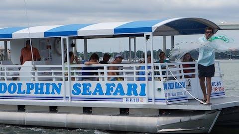 dolphin seafari boat