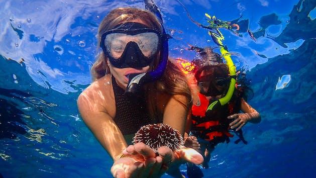 girl holding urchin snorkeling