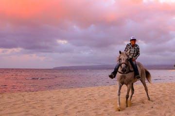 Horseback riding Oahu