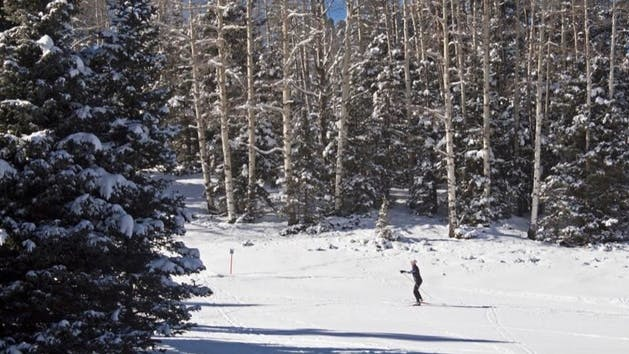 woman cross country skiing in distance