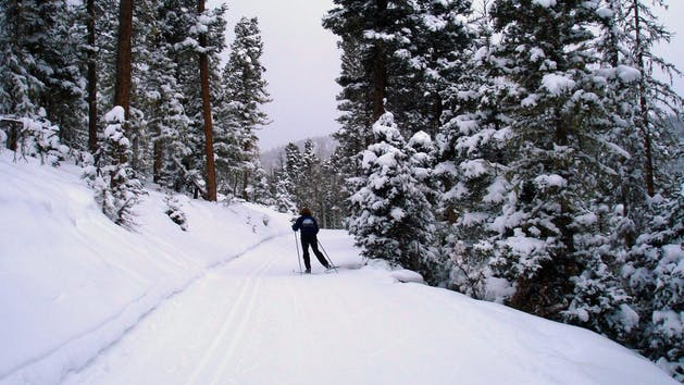 woman cross country skiing on narrow path